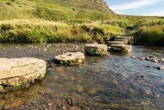 Les pierres de progression sur le chemin du sud de côte ouest traverse la rivière Images stock