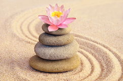 Les pierres de sable, de lis et de station thermale dans le zen font du jardinage Images stock