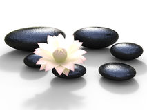 Les pierres de station thermale représente la fleur paisible et la spiritualité Photographie stock libre de droits