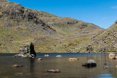 Les pierres ont dispersé dans une eau superficielle peu profonde dans le secteur de lac, R-U photos libres de droits