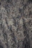 Les pierres ont photographi? en gros plan, belle texture grise de ressort photographie stock libre de droits