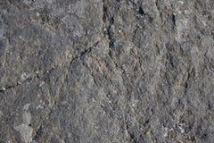 Les pierres ont photographi? en gros plan, belle texture grise de ressort images libres de droits