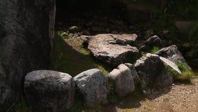 Les pierres se sont chargées de former un demi-cercle banque de vidéos