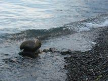 Les pierres sont dans l'eau Image libre de droits