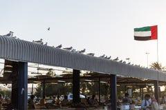 Les pigeons se tiennent dans le toit du marché de fruits de mer d'air ouvert avec onduler le drapeau des EAU près de la station d Image stock