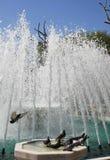 Les pigeons sont dans la fontaine Photographie stock