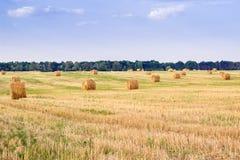 Les piles de foin sur la campagne mettent en place pendant le temps de récolte Photographie stock
