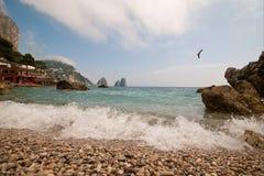 Les piles de la côte d'Amalfi de chèvres Image libre de droits