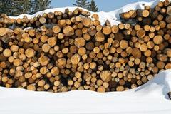 Les piles de logarithmes naturels ont coupé par des enregistreurs automatiques dans la neige photos stock