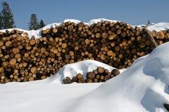 Les piles de logarithmes naturels ont coupé par des enregistreurs automatiques dans la neige photo stock