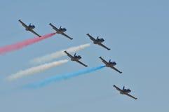Les pilotes experts du patriote L-39 exécutent chez Airshow Images libres de droits