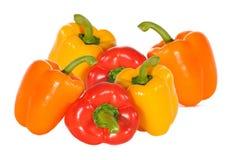 Les piments colorent sur le blanc Image stock