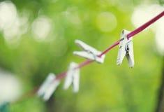 Les pinces à linge en plastique blanches accrochant sur la corde rouge avec le beau bokeh verdissent le fond Photo libre de droits