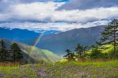 Les pins de paysage de montagne s'approchent de la vallée et de la forêt colorée sur le flanc de coteau Photo stock