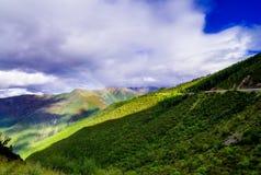 Les pins de paysage de montagne s'approchent de la vallée et de la forêt colorée sur le flanc de coteau Photographie stock libre de droits
