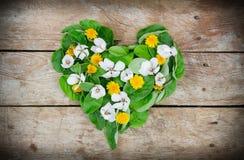 Les pissenlits et les fleurs de coing ont fait le coeur d'amour sur la table en bois Image libre de droits
