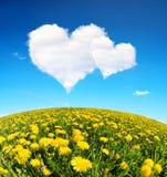 Les pissenlits mettent en place et ciel bleu avec des nuages d'un blanc sous forme de coeur Images stock