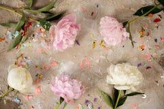 Les pivoines roses fraîches fleurit sur le fond en bois âgé Configuration plate Vue supérieure avec l'espace de copie Image modif Image stock