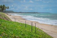 Les plages-Pontal brésiliennes font Coruripe, Alagoas Photo stock