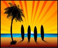 Les planches de surfing de coucher du soleil illustration de vecteur