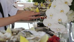 Les plats avec des huîtres clips vidéos