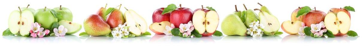 Les poires de pommes de collection d'Apple et de poire portent des fruits découpé en tranches dans une FRU de rangée Photographie stock libre de droits