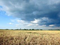 Les pois mettent en place et beau ciel nuageux, Lithuanie Photo libre de droits