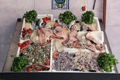 Les poissons colorés parent Photographie stock