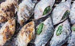 Les poissons couvrent par le sel grillé Images libres de droits