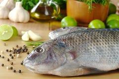 Les poissons crus ont appelé Tilapia Images stock