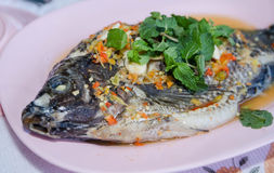 Les poissons cuits à la vapeur de Nilotica, style thaïlandais ont cuit des poissons à la vapeur en sauce épicée Photos libres de droits