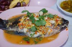 Les poissons cuits à la vapeur de Nilotica, style thaïlandais ont cuit des poissons à la vapeur en sauce épicée Photo libre de droits