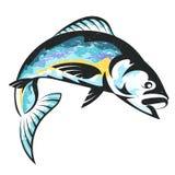 Les poissons dirigent d'isolement illustration libre de droits