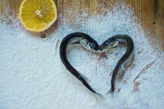Les poissons en forme de coeur se trouvent sur la farine photographie stock