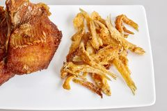 Les poissons frits et blancs de poissons de Tilapia d'amorce ont fait frire - fermez-vous, vue supérieure images stock