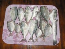 les poissons préparent pour la cuisson photo libre de droits