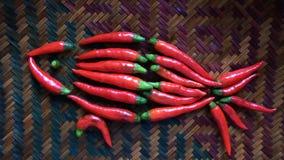 Les poissons rouges se composent des s/poivron Photographie stock