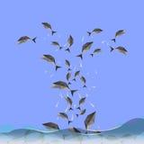 Les poissons sautant dedans au ciel Images stock