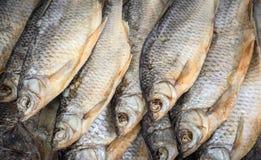 Les poissons secs Image libre de droits