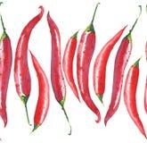 Les poivrons rouges chauds de piment lumineux modèlent le croquis de main d'aquarelle Image stock