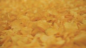Les pommes chips frites se déplacent le long du transporteur d'usine banque de vidéos