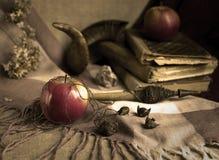 Les pommes enchantées par sorcière Image stock