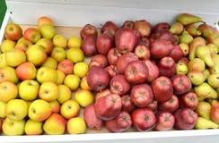 Les pommes et les poires mûres se trouvent sur un compteur du marché photographie stock libre de droits