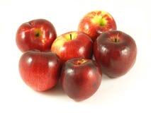 les pommes ont isolé le rouge Photographie stock libre de droits
