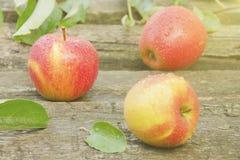les pommes relâche l'eau trois Image stock