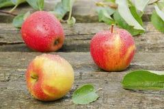 les pommes relâche l'eau trois Photographie stock