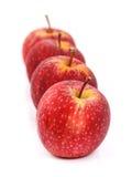 Les pommes rouges arrangent dans la rangée Photographie stock