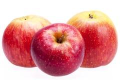Les pommes rouges d'isolement sur le fond blanc, se ferment  Photographie stock libre de droits