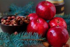 Les pommes rouges pour Noël durcissent avec de la farine nuts et les oeufs en cannelle parent des branches Photos stock