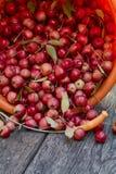 Les pommes sauvages Photo stock